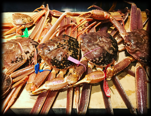 松葉蟹料理 | 吉星